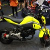 NEW HONDA MSX 125 SF (2)