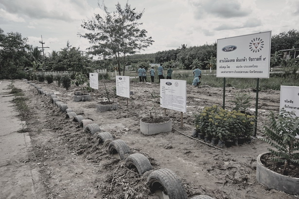 Ford Water Go Green in Rayong (11)
