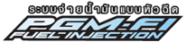 logo-pgm-fi